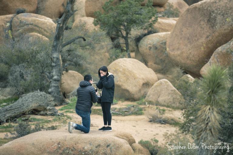 Joshua Tree National Park Proposal